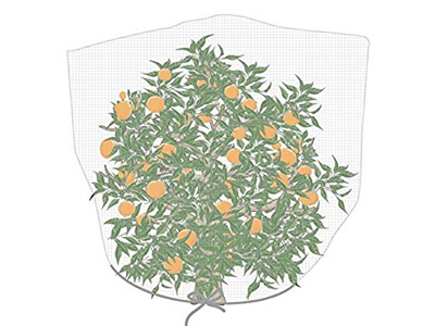 fruit tree net bag