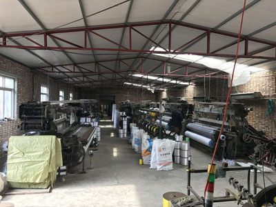 Insect net factory